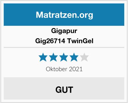 Gigapur Gig26714 TwinGel Test