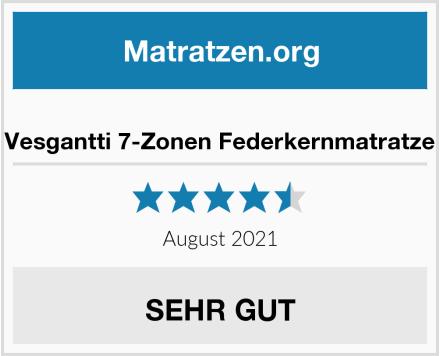 Vesgantti 7-Zonen Federkernmatratze Test