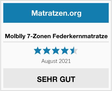 Molblly 7-Zonen Federkernmatratze Test